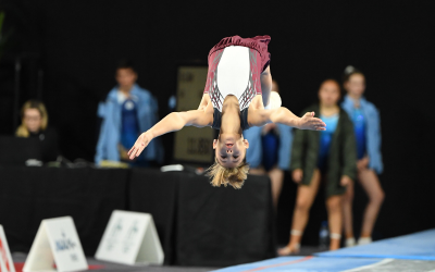 What is Trampoline and Tumbling?